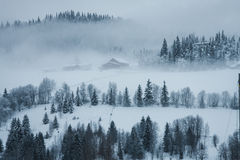 Buildings in fog. Some Old buildings in mountain with fit-tree and snow around in fog Stock Image