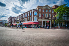 Buildings at Harvard Square, in Cambridge, Massachusetts. Royalty Free Stock Photo