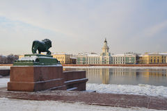 Buildings of Kunstkamera and sculpture of a lion Stock Photo
