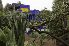 Buildings in majorelle on a rainy day. Jardine Majorelle on a rainy day Royalty Free Stock Photography