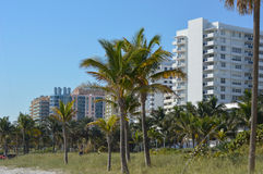 Buildings in Miami. Buldings very close to the beach in Miami, Florida stock photo