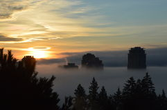 Buildings in morning mist Royalty Free Stock Photo