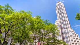 Buildings of New York City, Fifth Avenue, Manhattan Royalty Free Stock Images