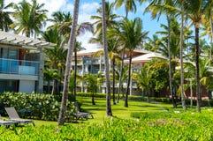 Buildings among palm trees stock image