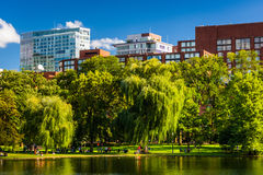 Buildings and a pond in the Public Garden in Boston, Massachusetts. stock image
