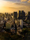 Buildings in Rio de Janeiro downtown during golden light sunset royalty free stock photo