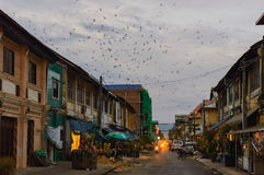 Buildings on the street of Kampot Old Town. Cambodia Royalty Free Stock Image