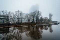 Buildings and trees in Harbor East in fog, in Baltimore, Maryland.  royalty free stock image