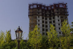 Buildings under construction. With green maidenhair tree Royalty Free Stock Images