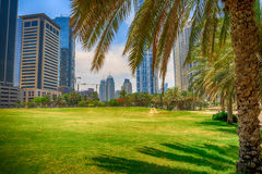 Buildings view. View of Dubai buildings from a garden Stock Image