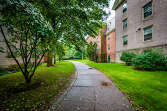 Buildings and walkways on the campus of Brown University, in Pro Stock Photography