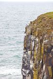 Dunstanburgh Castle - the hill royalty free stock image