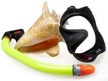 Buis voor duikend (snorkel), groot overzeese shell en masker Royalty-vrije Stock Afbeeldingen