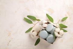 Buiscits français de dessert de macarons de myrtille sur le fond texturisé rose blanc en bois Photos libres de droits
