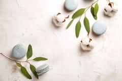 Buiscits français de dessert de macarons de myrtille sur le fond texturisé rose blanc en bois Images stock