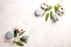 Buiscits français de dessert de macarons de myrtille sur le fond texturisé rose blanc en bois Photos stock