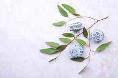 Buiscits français de dessert de macarons de myrtille sur le fond texturisé rose blanc en bois Photographie stock