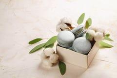 Buiscits français de dessert de macarons de myrtille sur le fond texturisé rose blanc en bois Photographie stock libre de droits