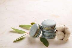Buiscits français de dessert de macarons de myrtille sur le fond texturisé rose blanc en bois Image stock