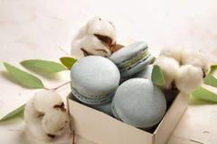 Buiscits français de dessert de macarons de myrtille sur le fond texturisé rose blanc en bois Images libres de droits