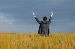 Buisnessmen in a wheat field stock photos