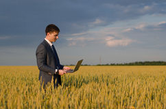 Buisnessmen in a wheat field. Happy farmer, businessman, standing in wheat field over wind turbines background with his laptop Royalty Free Stock Photos