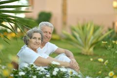 Buisson de floraison proche de couples supérieurs Images libres de droits