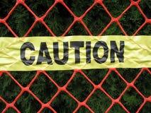 Buisson de genévrier protégé par la maille en plastique de barrière Photos stock