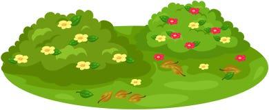Buisson mignon sur le jardin illustration de vecteur
