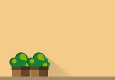 Buissons dans des pots Images libres de droits