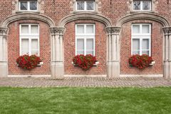 Buissons en forme de coeur rouges de fleur image libre de droits