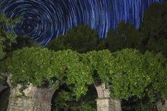 Buissons et étang la nuit photographie stock libre de droits