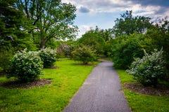 Buissons et arbres le long d'un passage couvert à l'arborétum de Cylburn, Baltimore photos libres de droits
