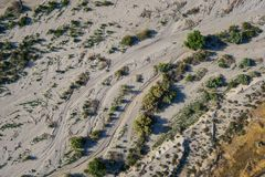 Buissons et croissance de désert Images libres de droits