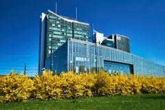 Buissons fleurissant au printemps et façades des immeubles de bureaux modernes photographie stock