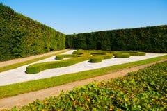 Buissons ornementaux dans le jardin français le jour ensoleillé d'été Images stock