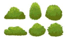 Buissons verts de jardin Arbuste de bande dessinée et ensemble de vecteur de buisson d'isolement sur le fond blanc illustration libre de droits