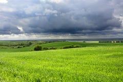 Buiten de stad - landelijk landschap - een oude windmolen op het gebied Stock Foto's