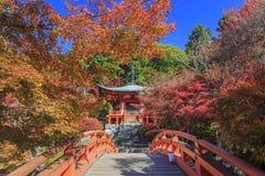 Buitengewone mening, dalingskleur bij Daigoji-tempel, Japan in de herfst Stock Foto's