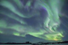 Buitengewone noordelijke lichten royalty-vrije stock foto's