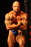 Buitenissige bodybuilder Royalty-vrije Stock Fotografie