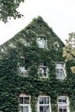 Buitenkant van een huis in klimop royalty-vrije stock fotografie