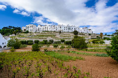 Buitenmening van Locorotondo, Puglia, Italië stock foto