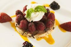 Buitensporig rasberry en aardbeidessert. Stock Afbeeldingen