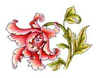 Buitensporige bloem Royalty-vrije Illustratie