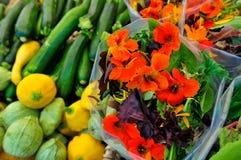 Buitensporige Greens en de Pompoen van de Salade Stock Afbeelding