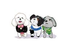 Buitensporige Honden Royalty-vrije Stock Foto's