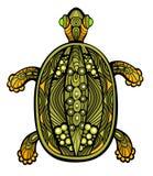 Buitensporige Schildpad royalty-vrije illustratie