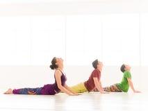 Bujangasana cobra yoga posture Royalty Free Stock Photos