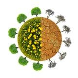 Bujny i suszy planetę z drzewami fotografia royalty free